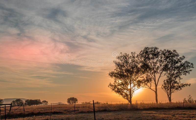 Sunrise with silhouetted trees and a broken fence. Sunrise over a winter landscape with silhouetted dry trees and a broken fence image in landscape format with royalty free stock image