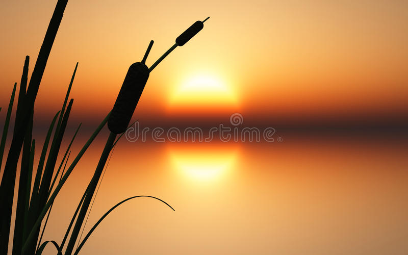 Download Sunrise Sunset Over Calm Water Stock Illustration - Image: 13983245