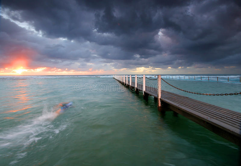 Sunrise swim with storm clouds royalty free stock images
