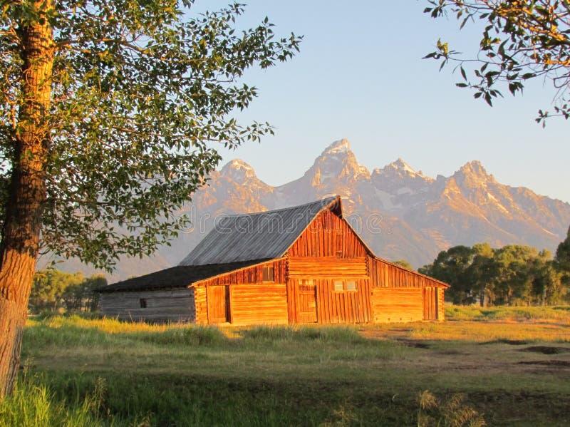 Sunrise at Teton royalty free stock images