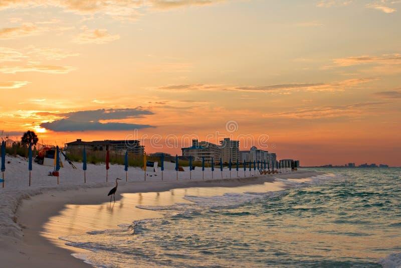 Download Sunrise Under Atlantic Ocean Coast Stock Image - Image: 10905281