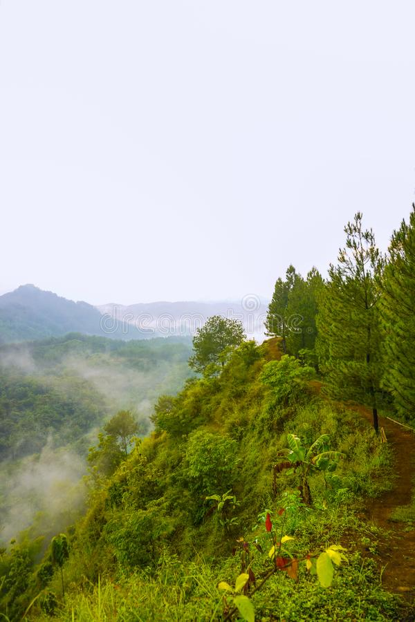 Sunrise view in the hills of Buluh Payung, Kebumen, Central Java, Indonesia. Dawn, sunlight, sunset, mist, fog, scenery, haze, highland, meadow, orange royalty free stock photos
