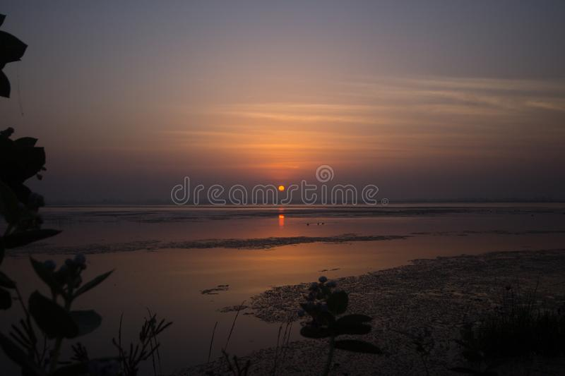 Sunrise lake and beautiful tall grass and reeds royalty free stock photography