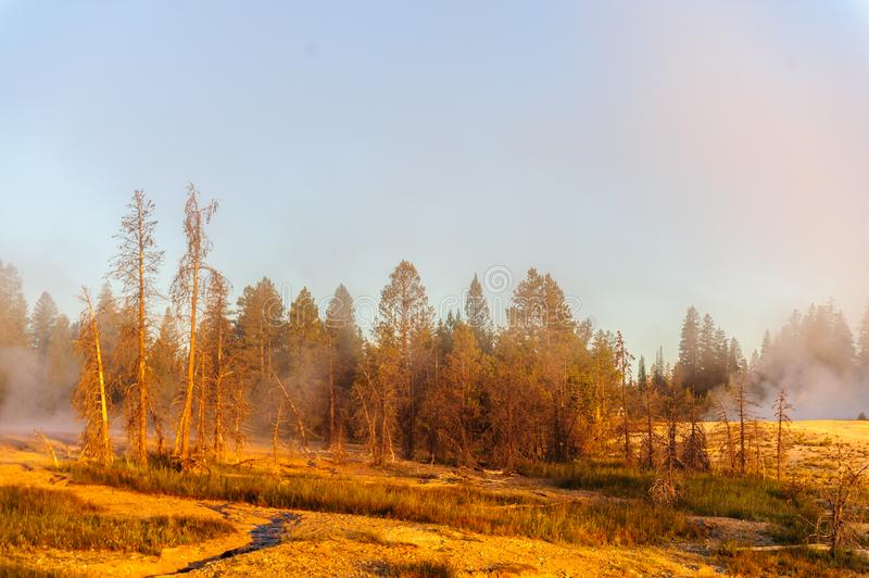 Sunrise in West Thumb. A sunrise in the West Thumb Area in Yellowstone National Park royalty free stock photos