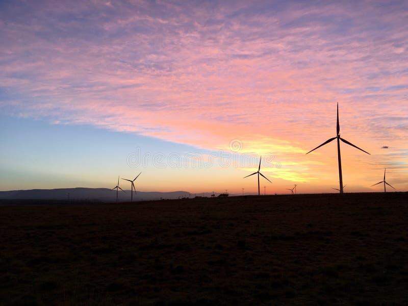 Wind Turbines Morning Sunrise royalty free stock photo