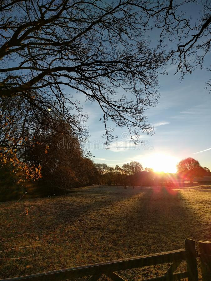 Sunrise on a winter morning royalty free stock photography