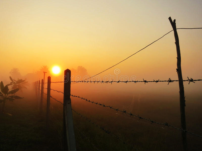 Sunrise in the winter morning stock photo