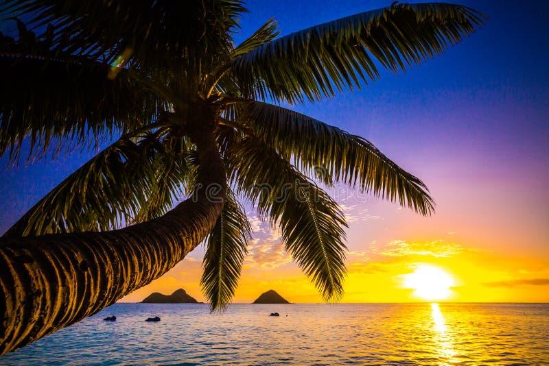 Lanikai Beach Sunrise royalty free stock photography