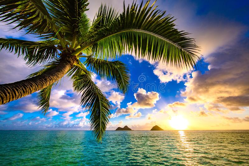Lanikai Beach Sunrise royalty free stock photo