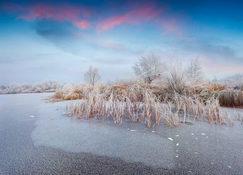 Sunriseon fantástico del invierno el lago congelado foto de archivo libre de regalías