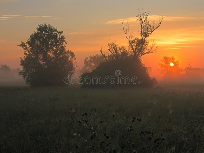 Sunrises stock images