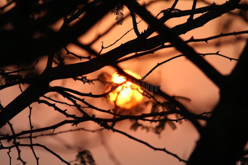 Sunrises sunsets σε έναν ωκεανό στοκ εικόνες