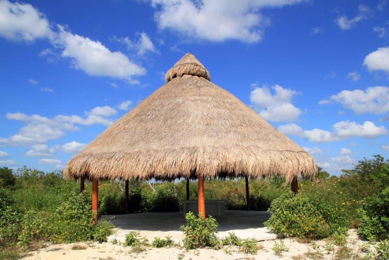 Sunroof grande da cabana de Palapa na selva de México fotos de stock royalty free