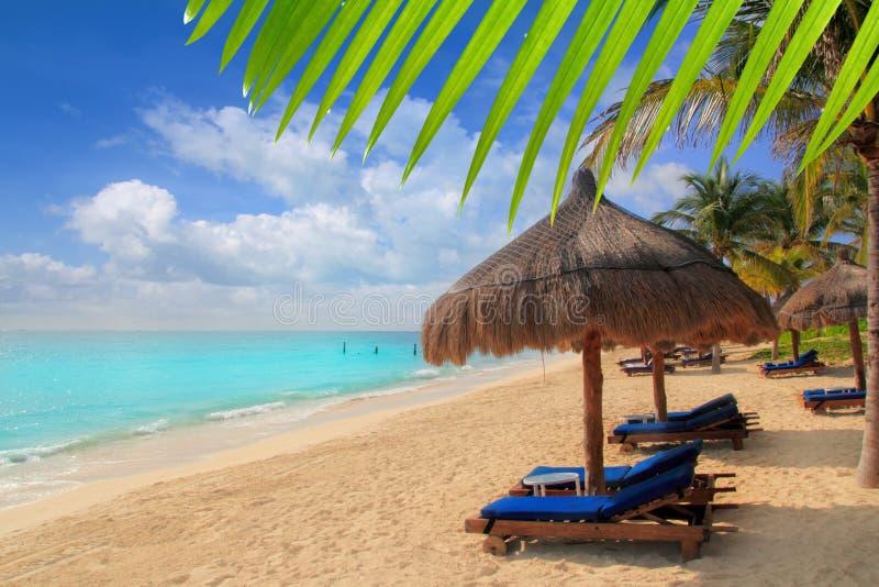 Sunroof maia as Caraíbas das palmeiras da praia de Riviera fotografia de stock royalty free