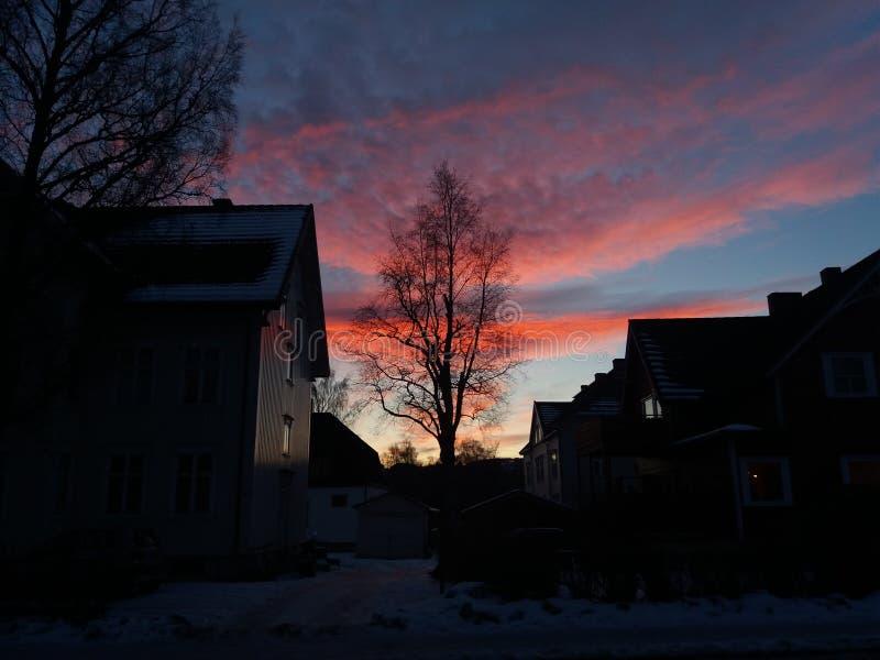 Sunseat norvégien d'hiver images libres de droits