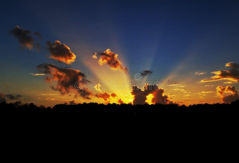 sunset żywy zdjęcia stock