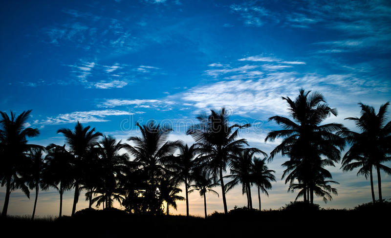 Download Sunset 011 stock photo. Image of black, resort, relaxation - 28909278