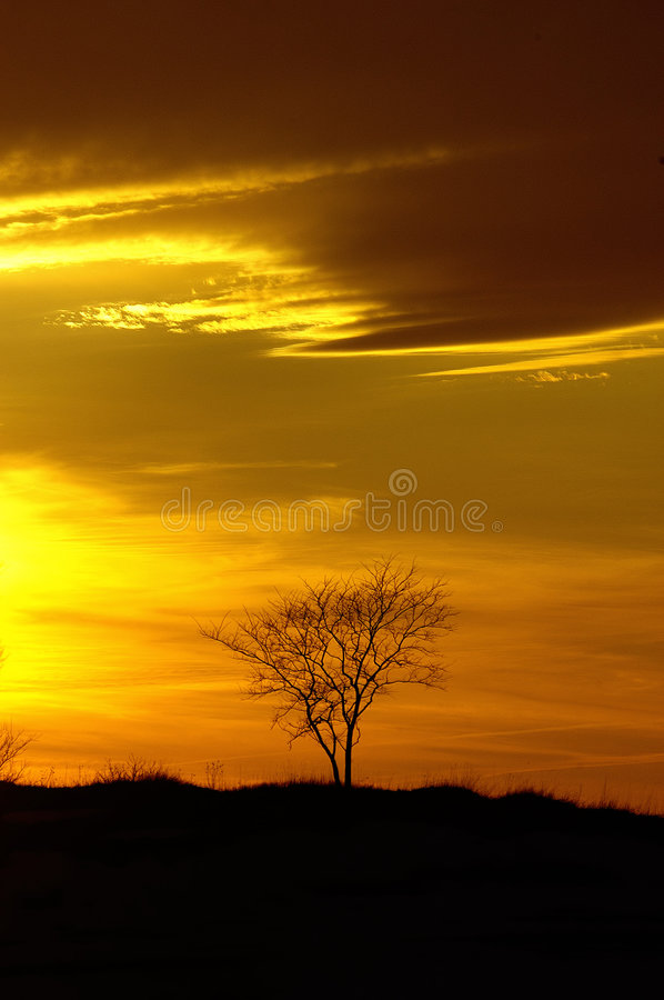 Free Sunset Royalty Free Stock Photos - 1193428