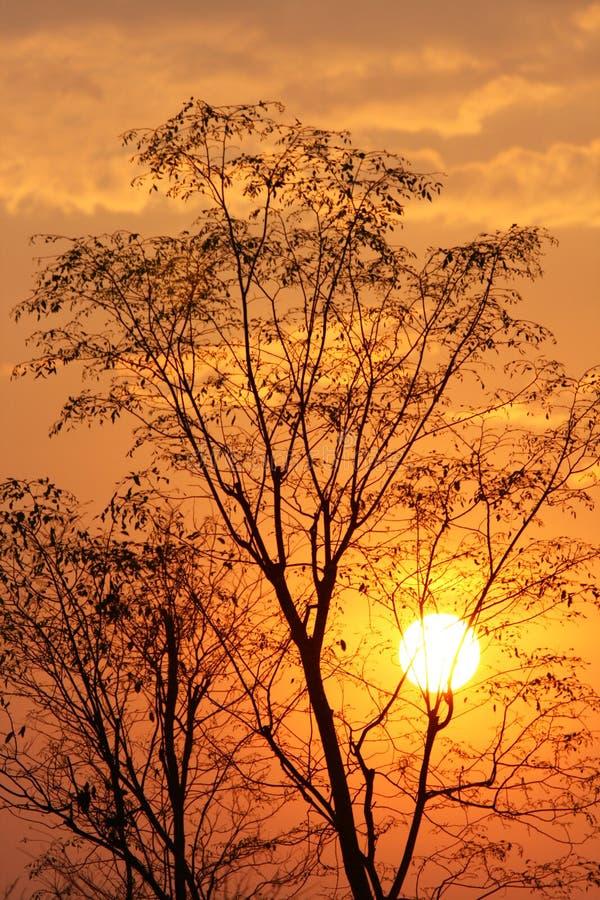 Free Sunset Stock Photos - 13668113