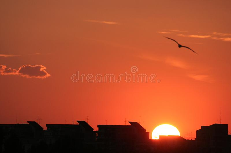 Sunset Free Stock Images