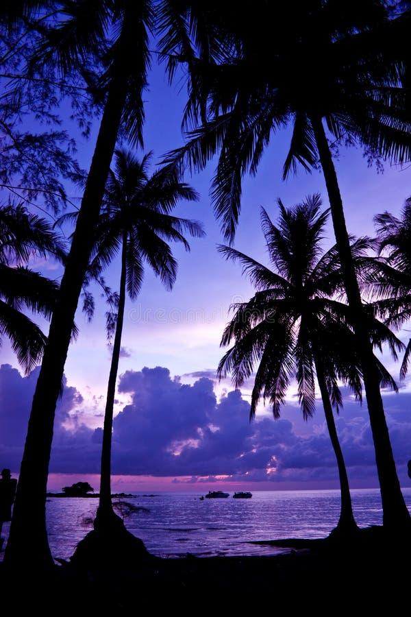 Free Sunset Royalty Free Stock Image - 15941096