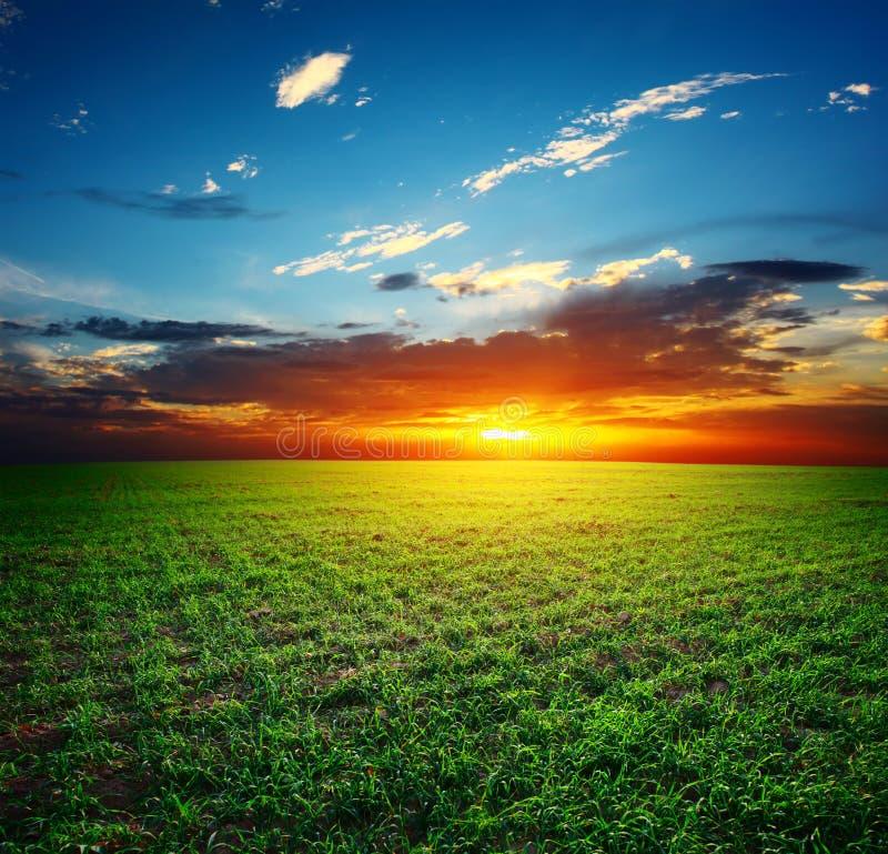 Free Sunset Stock Photos - 16223523