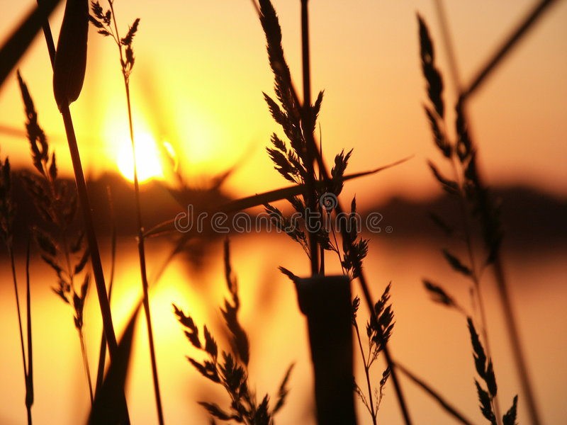 Download Sunset stock image. Image of glare, relaxing, romantic - 180859