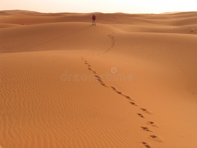 Download Into the sunset stock photo. Image of footstep, sand, quiet - 202076