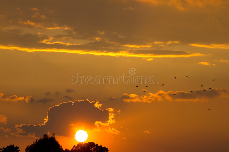 Download Sunset stock photo. Image of holy, born, black, bright - 2735564