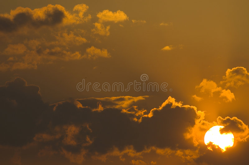 Download Sunset stock photo. Image of ethereal, bird, black, group - 3059230