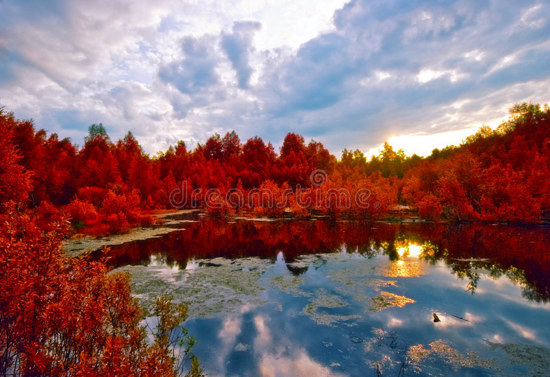 Sunset above red gloomy spring lake royalty free stock images