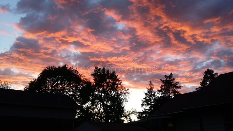 Sunset Above the Trees royalty free stock images