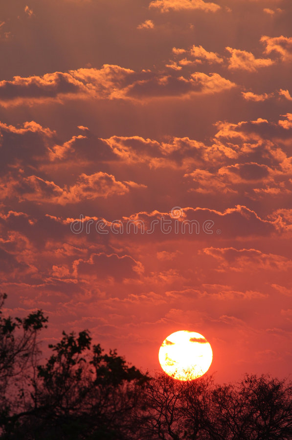 Download Sunset in Africa stock photo. Image of idyllic, clouds - 4540966
