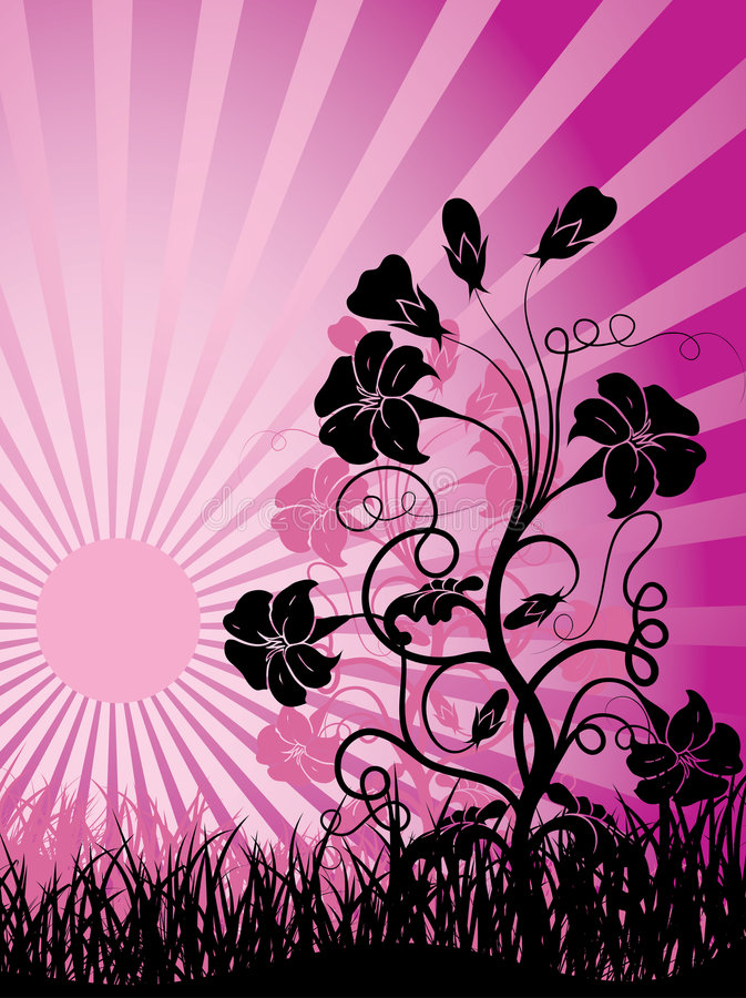 Free Sunset And Flower, Vector Stock Photo - 2276320