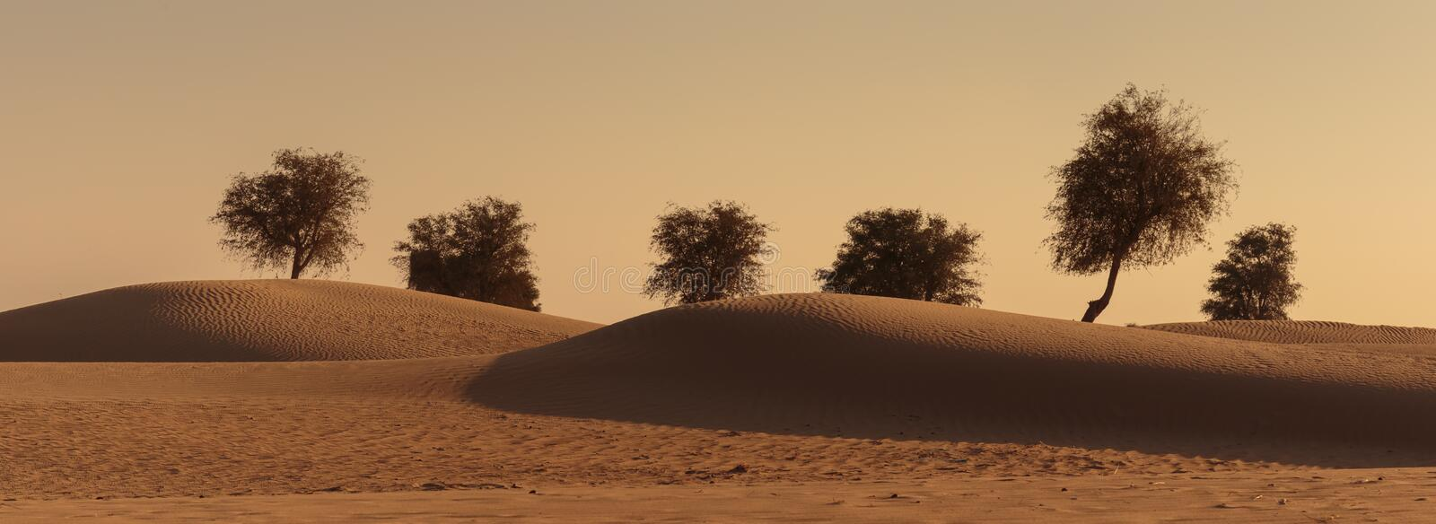 Sunset in the Arabian desert royalty free stock images