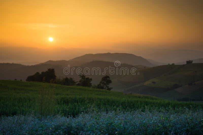 Sunset arrange sky stock photos