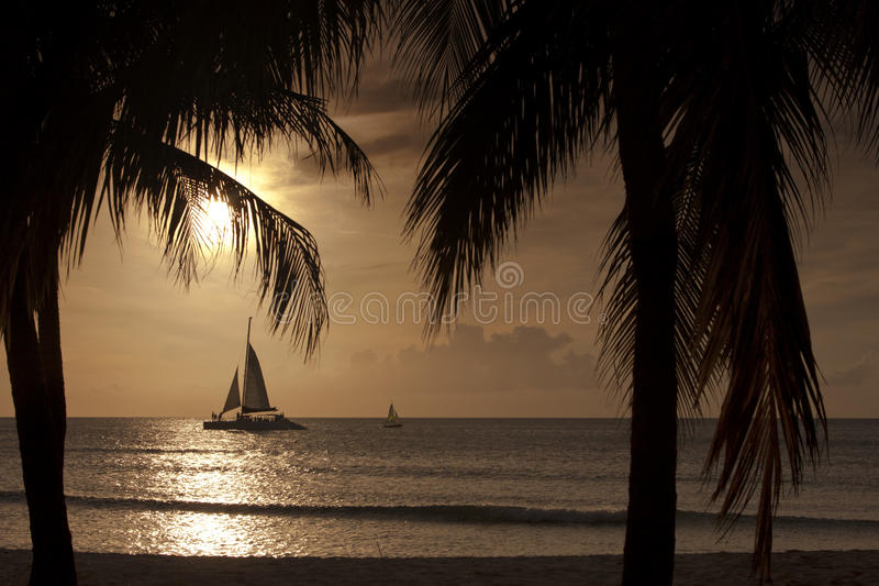 Sunset on Aruba. Sunset with palmtrees and two sailing boats on the island of Aruba in the Caribbean royalty free stock photo