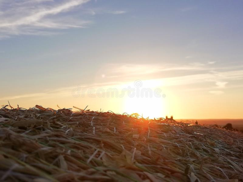 Sunset atop hay bale royalty free stock photos