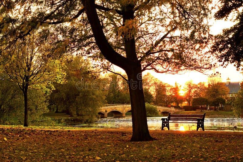 Sunset in autumn park