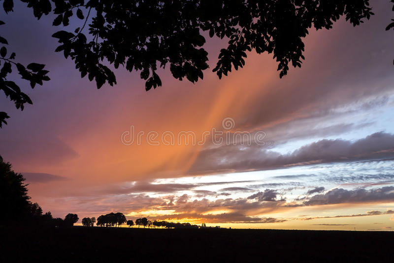 Download Sunset Autumn Or Summer Sky With Trees Stock Photo - Image of country, season: 80672304
