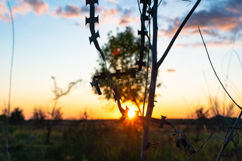 Sunset on barbed wire stock photo