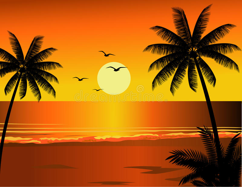 Download Sunset at beach stock vector. Image of hawaii, paradise - 11268428
