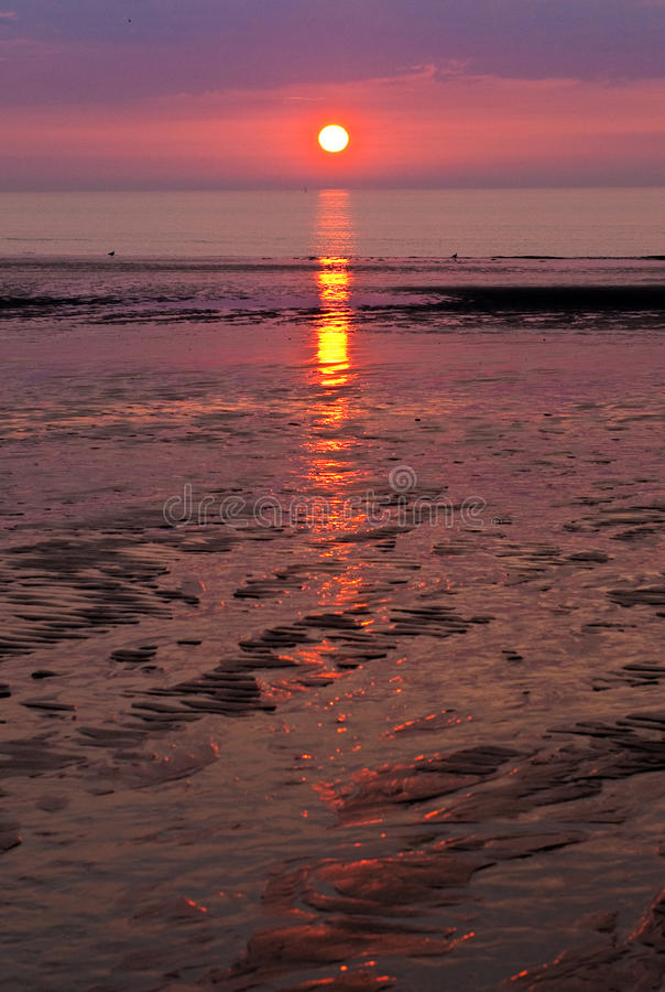 Sunset and beach stock images