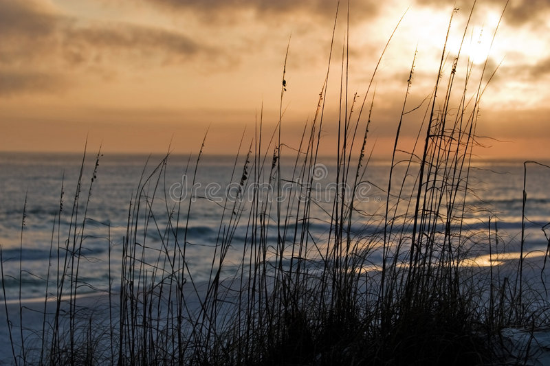 Download Sunset On The Beach Royalty Free Stock Images - Image: 7703979