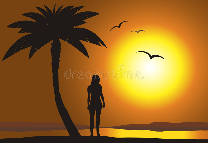 Download Sunset on the beach stock vector. Illustration of scenery - 9312490
