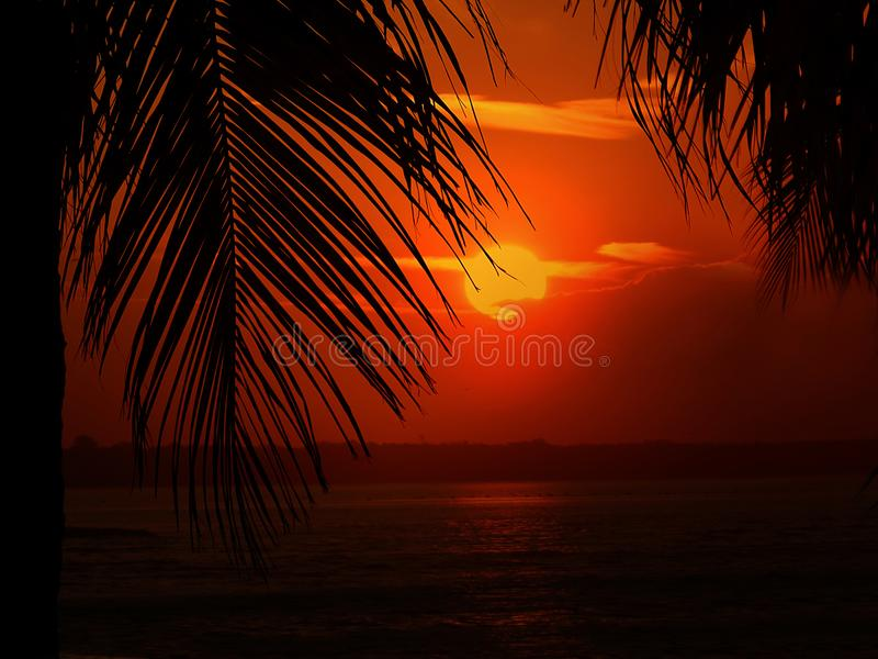 Sunset On The Beach. Beautiful Golden Sunset On The Beach stock photo