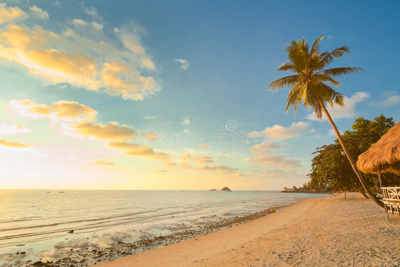 Download Sunset Beach With Palm Trees And Bungalow Stock Image - Image: 13721437