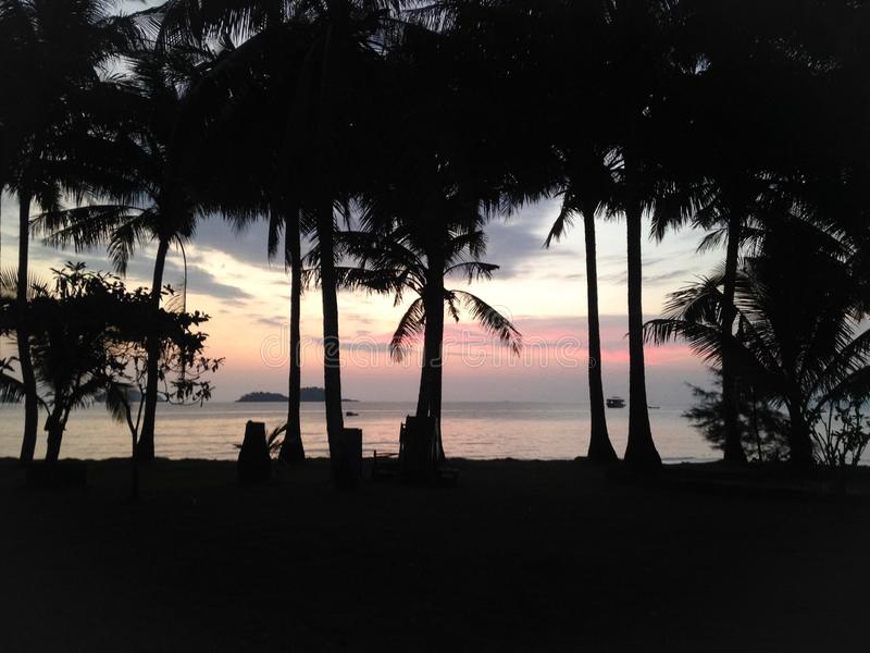 Sunset on the beach, palm trees silhouettes against the sky background. Travel destination - Ko Chang, Thailand royalty free stock images