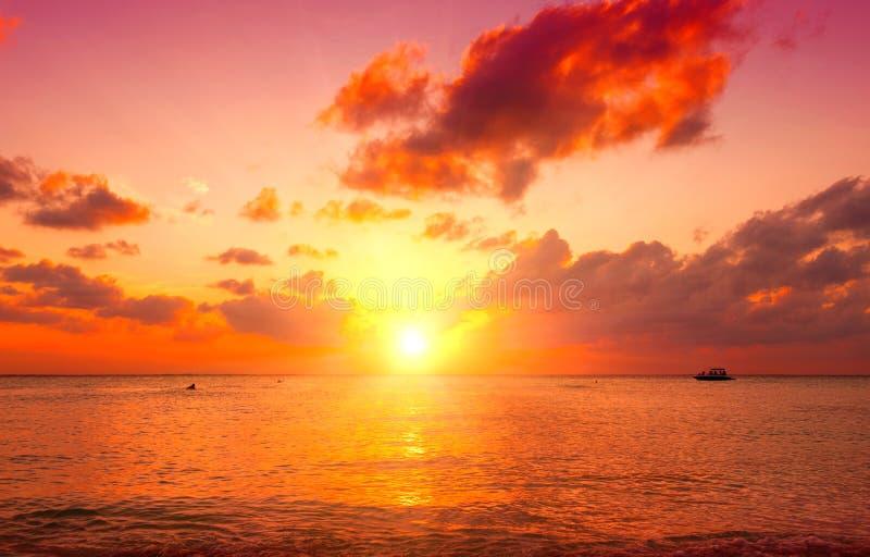 Sunset beach. Paradise scene of Caribbean island stock image