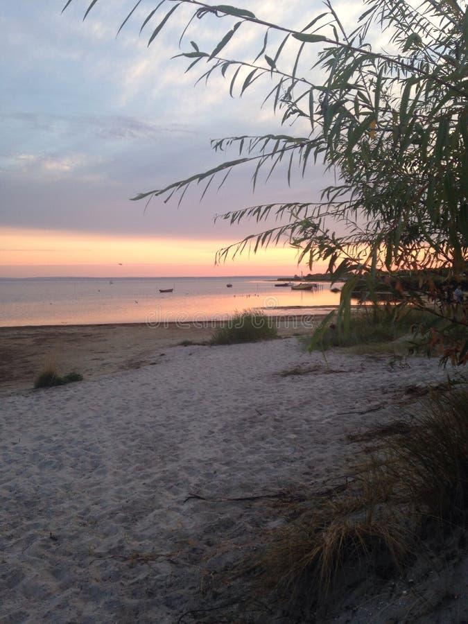 Sunset on a beach stock photography